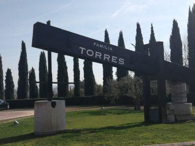 Bodegas Torres 2(1)