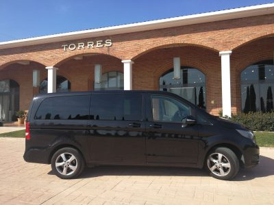 Bodegas Torres Barcelona(1)